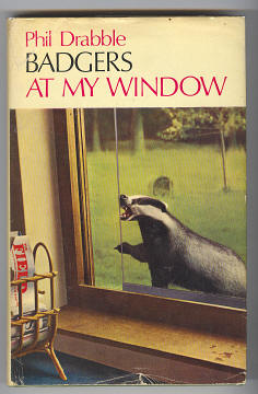 DRABBLE, PHIL, - BADGERS AT MY WINDOW.